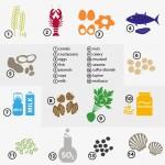 東大 食物アレルギーの症状抑える分子を発見