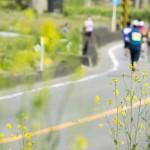 地方創生につながる学生の研究、コンソーシアム富山が助成