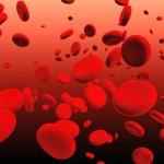 血中乳酸値を制御する新メカニズム解明―慶大ら