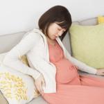 東京大学 胎盤形成にはウイルス由来遺伝子が関与