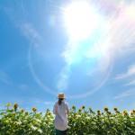 東京大学、宮崎大学 太陽光で効率よく水素製造