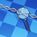 東北大学 リボソームRNA遺伝子が染色体上にない細菌を発見