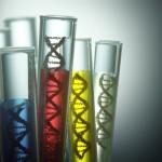 京都大学iPS細胞研究所が武田薬品と共同研究