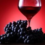 奈良女子大学とメルシャン 赤ワインポリフェノールの抗動脈硬化作用を確認