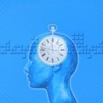 東京大学 体内時計はなぜ時刻合わせができるのか