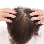 加齢により毛が薄くなる仕組みを解明 東京医科歯科大学