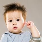 遺伝性難聴における「霊長類に特異的な」遺伝子の発現を発見 慶應義塾大学