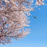 桜美林大学パイロット養成コースの学生が航空機操縦士協会から表彰