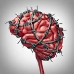 ストレスに負けない脳を作るカギは「SIRT1」  山口大学