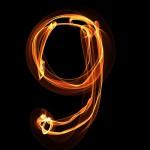 細胞中心子の構造決定原理解明 マジックナンバー「9」の決定機構 法政大学