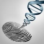 世界初 ゲノム解析情報含む大規模データベース開発、東北大学