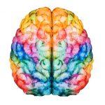 内閣府が脳の健康をテーマに革新的アイデア募集、大学で実証実験も