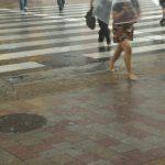 解像度100mの精度で30分先のゲリラ豪雨予測に成功、大阪大学など