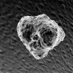 岡山大学、腫瘍融解ウイルス製剤をがん細胞へ選択的に運搬する技術を開発